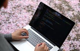 Mail.ru Group запустила бесплатные курсы по мобильной разработке для студентов