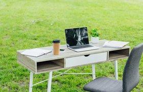 Как сделать офис eco-friendly: 7 простых шагов