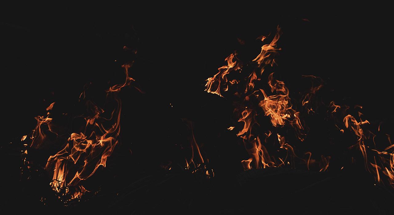 Как лесные пожары влияют на окружающую среду?