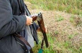 Барнаульский депутат получил условный срок за незаконную охоту на медведей
