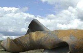 Под Киевом взорвался газопровод, через который в Европу идет российский газ