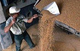 Правительство сбивает цены субсидиями и интервенциями