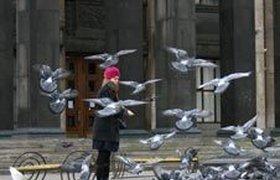 Выходные в Москве: тепло и сыро