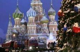 """В Подмосковье срублена """"главная ёлка страны"""""""