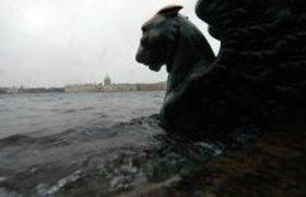 В Санкт-Петербурге началось зимнее наводнение. Фоторепортаж