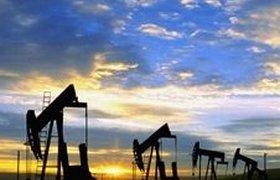 Россия открывает товарные биржи ради укрепления рубля