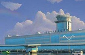 """Государство хочет вернуть себе аэропорт """"Домодедово"""""""