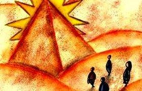 В Санкт-Петербурге выявлено 7 фирм с признаками финансовых пирамид