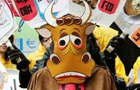 Корейцы протестуют против импорта говядины из США. Фоторепортаж