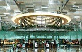 """""""Пулково"""" могут перестроить по сингапурскому образцу: бассейн, кино и сады"""