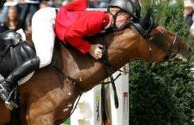 Высокие отношения с лошадью