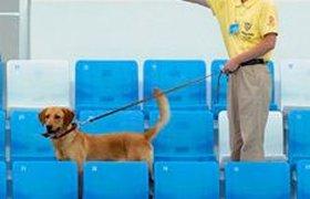 Спонсоры Олимпиады недовольны полупустыми трибунами