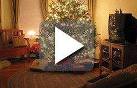 Видео. Москва начала готовиться к Новому году в ноябре