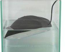 Водоплавающая мышь