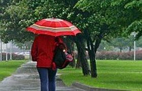 Очередной серый уикенд: что можно увидеть, пока идет дождь
