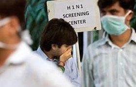 Российские туристы не боятся свиного гриппа