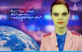 Пародия на Екатерину Андрееву