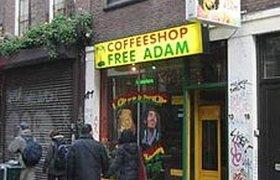 Власти Нидерландов запретят продавать туристам марихуану