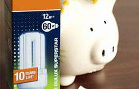 Власти обещают кредиты населению на энергосберегающие лампы и счетчики
