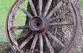 Россияне признали колесо самым полезным изобретением человечества