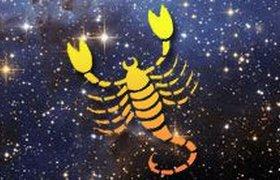 Гороскоп-2010. Скорпион: вы по-прежнему держите синюю птицу удачи за хвост