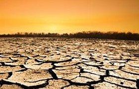 2009 год выдался одним из самых жарких в истории