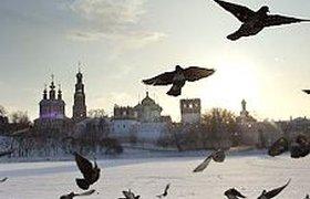 На выходных в Москве будет мороз и солнце