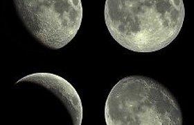 Колебания на финансовых рынках зависят от фазы луны