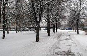 Метели и морозы станут подарком на 8 марта