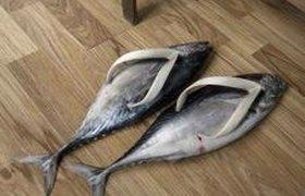 Вьетнамки для фанатов рыбы
