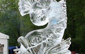 В Петербурге появится летний ледяной городок