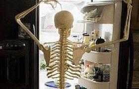 Ужасы офисных холодильников