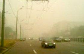 Видимость в Москве и области не превышает 500 метров из-за смога. ВИДЕО