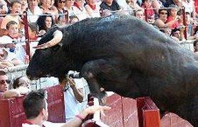 В Испании на представлении бык покалечил 30 человек. ФОТО, ВИДЕО
