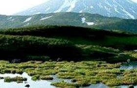 Камчатские турфирмы будут участвовать в социальных турах