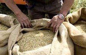 Запрет на экспорт зерна привел к остановке торговли на внутреннем рынке