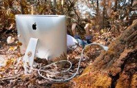 Компьютер в лесу