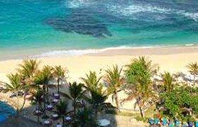 На Бали зафиксирована эпидемия бешенства