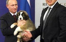 Россияне смогут придумать имя для новой собаки Путина