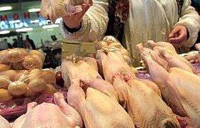 Россия отказывается от импортной курятины