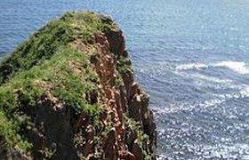 Иностранцам разрешили приезжать в Приморье на трое суток без виз