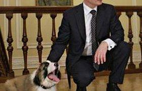 У новой собаки Путина появилось имя. ФОТО, ВИДЕО