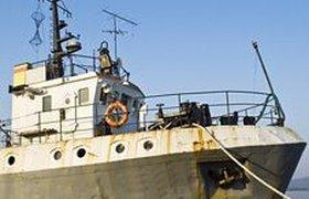 Российские пограничники за взятки разрешили японцам ловить рыбу сверх нормы