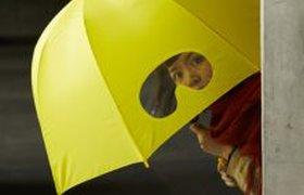 Зонт с окошком
