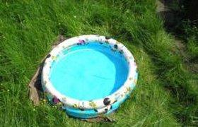Необычный способ окунуться в бассейн