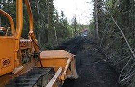 Цена строительства скандальной трассы через Химкинский лес выросла вдвое
