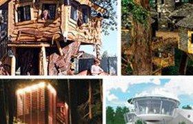 Десять удивительных домов на деревьях. ФОТО