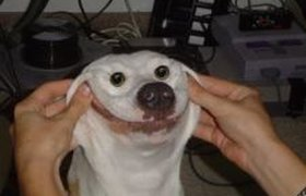 Натянутая улыбка в понедельник