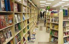 Отсутствие законов тормозит развитие рынка электронных книг в России