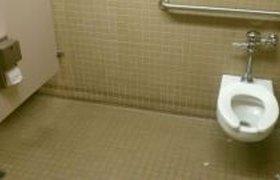 Гениальный туалет